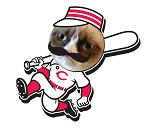 Grumpy Cat Latos Logo